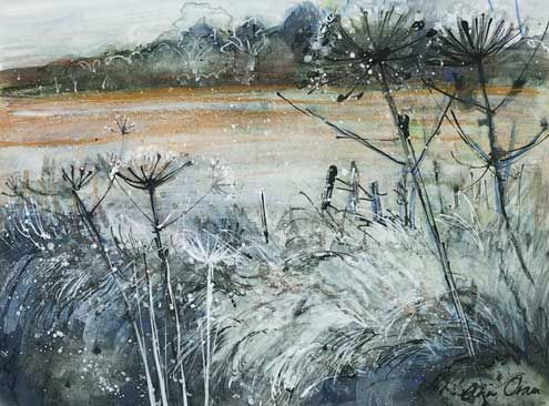 Ann Oram - Fields and Frost
