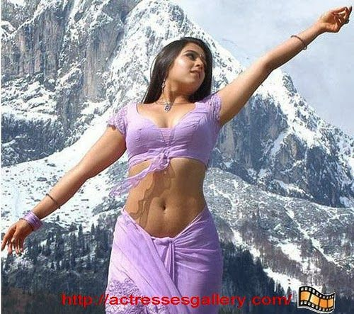 Charmi Kaur Hot Photos | South Indian Actresses Hot Navel Pictures ...