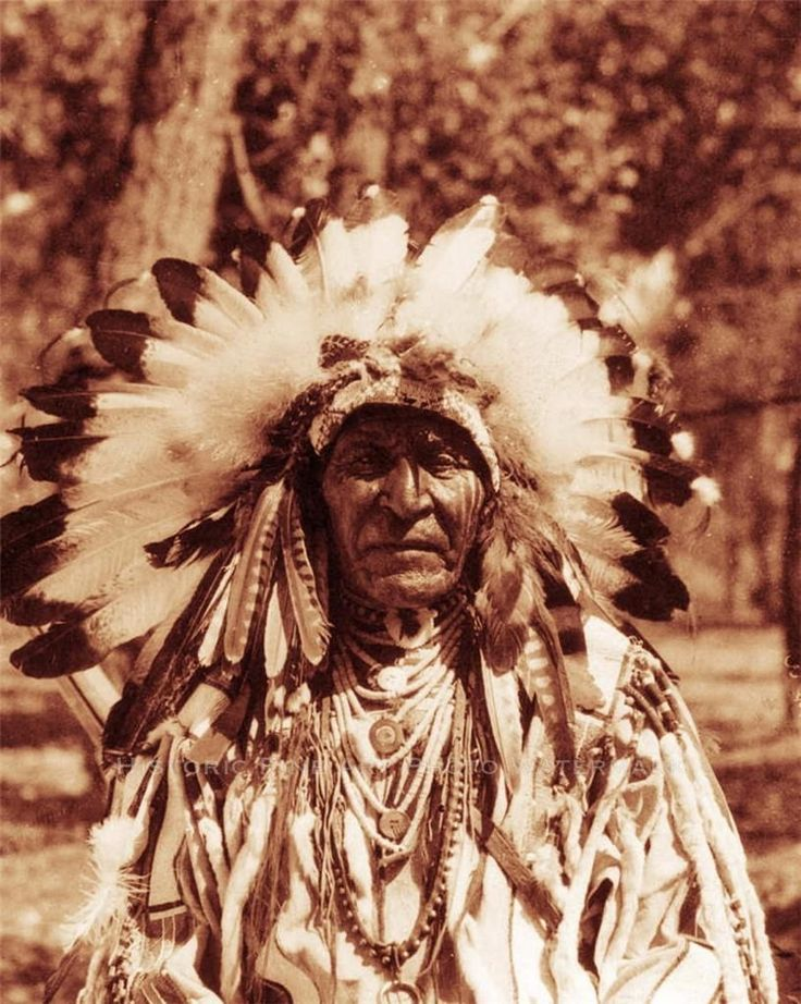 Crow Indian Chief Two Leggins Vintage Photo Native American Old West 21385 | eBay