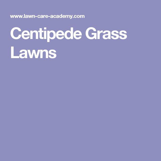 Centipede Grass Lawns