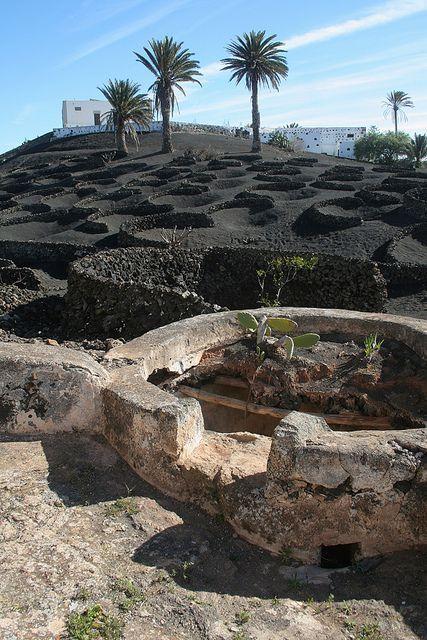 Aljibe y viñedos en Tías, isla de Lanzarote, Islas Canarias