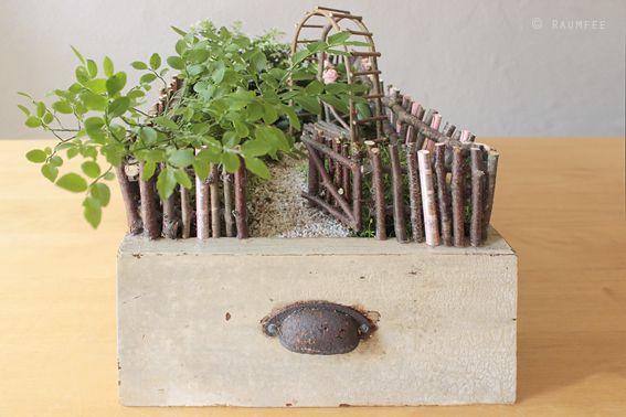 die raumfee geldgeschenk als minigarten in alter schublade geburtstag pinterest g rten. Black Bedroom Furniture Sets. Home Design Ideas