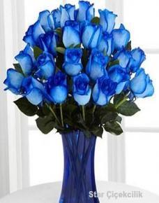 Mavi Güllerin Anlamı Mavi Gül Bakımı Mavi Gül, Mavi gül doğada bulunmaz, en azından saf mavi güller. Çünkü güllerde mavi renk üreten pigmentler bulunmaz. Bizim mavi güllerimiz zahmetlice üretilmişlerdir ve özel bir anlama sahiptirler.  Yazının Devamı İçin Tıklayın.. http://www.tuzla-cicekci.com/blog/18-mavi-gullerin-anlami.html