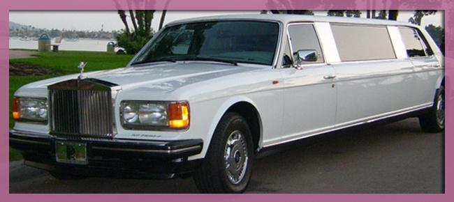 The Dog's limo