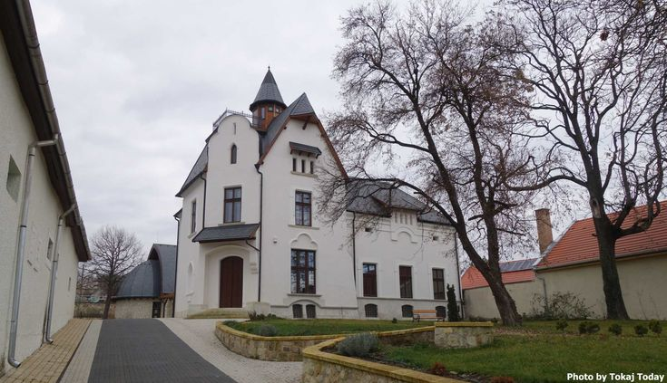 RENEWED BORSAI VILLA IS VENUE FOR ST VINCENT DAY TASTING IN MÁD