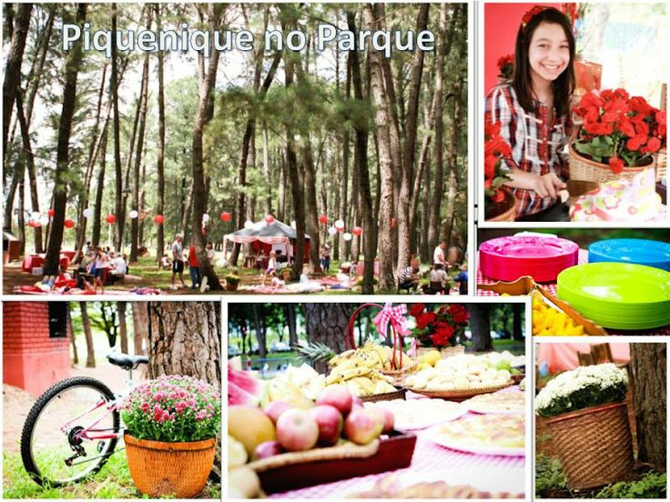 piquenique no parque Festa piquenique Pinterest