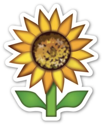 60 Best Emoticons Flowers Images On Pinterest Daisies