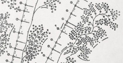 Het organogram, zo je wil het organigram, is de kaart die de organisatie representeert: de baas op de top van de (vaak)piramidemet de minderen daaronder. Minderen die aftakken naar senioriteitc.q.conform de lijnen waarin zij dienen te rapporteren.Over het algemeen is deze kaart een zwakke afspiegeling van de dagelijkse realiteit.  Bron pin: New York and Erie Railroad organisation chart from 1855 © Geography & Maps/Library of Congress