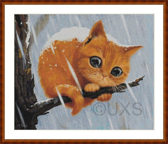 Will I be Forever Alone Cute Ginger Kitten on by UnconventionalX, $66.50