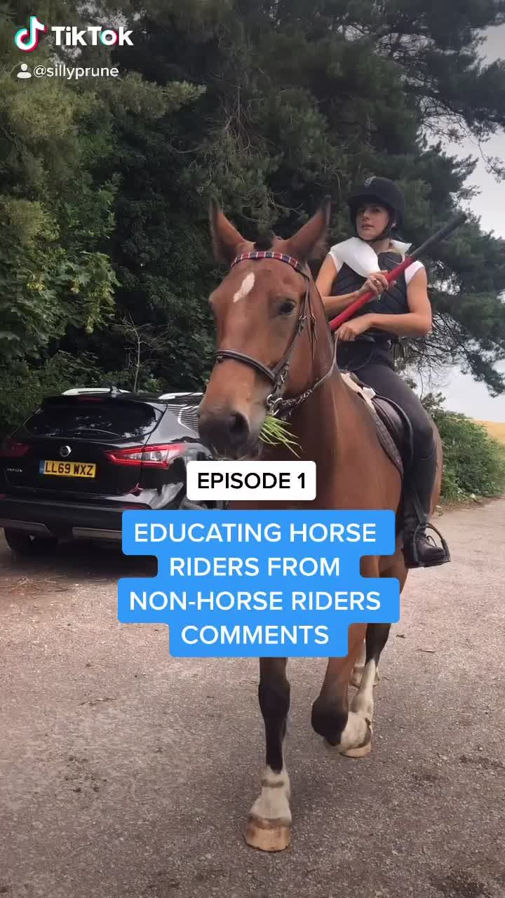 Pin By Bertie On Cute Horse Rider Horses Rider