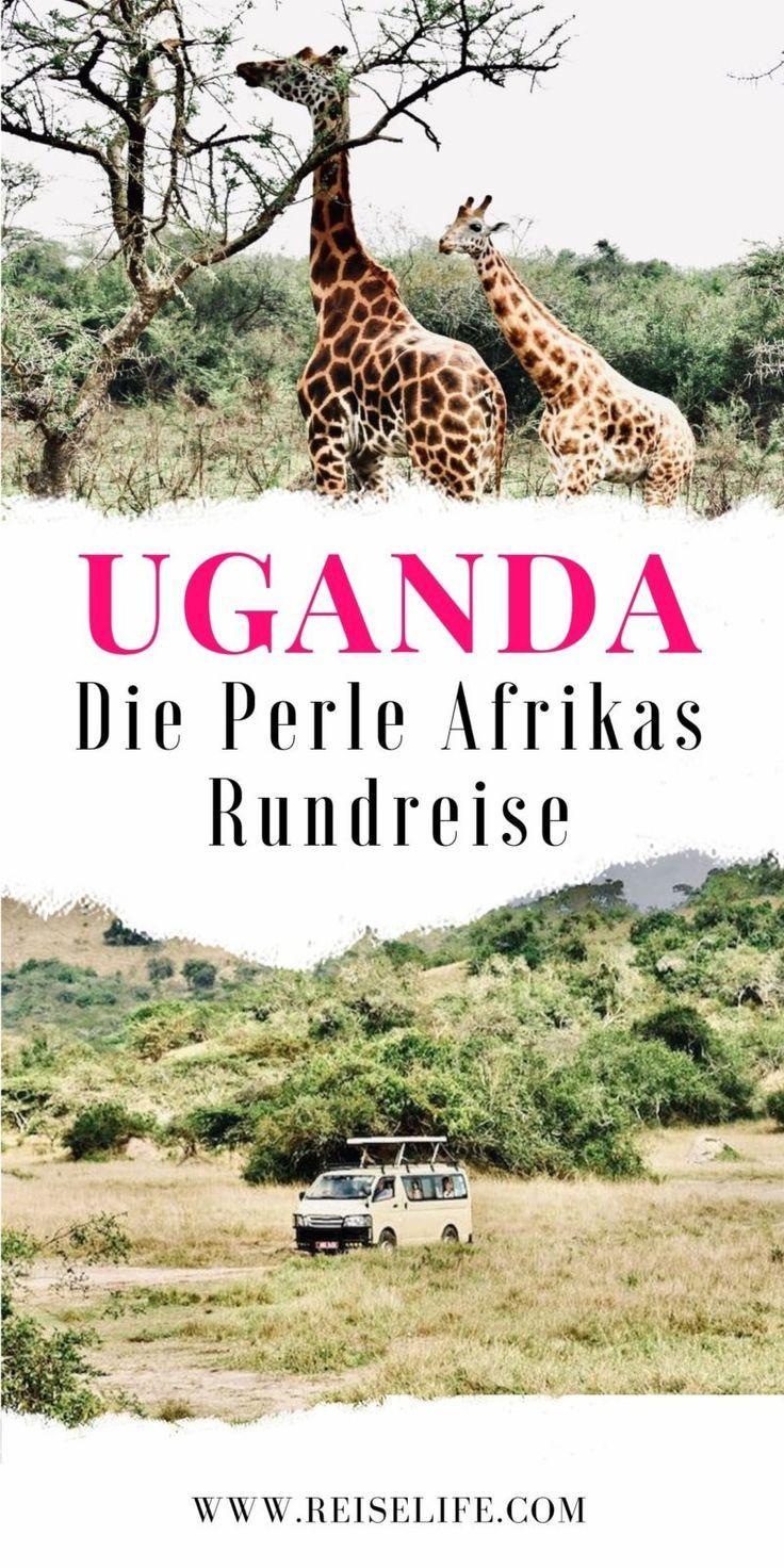 Wie Gefahrlich Ist Ein Uganda Urlaub Ein Rundreise Erfahrungsbericht Reiselife Rundreise Afrika Urlaub Reisen