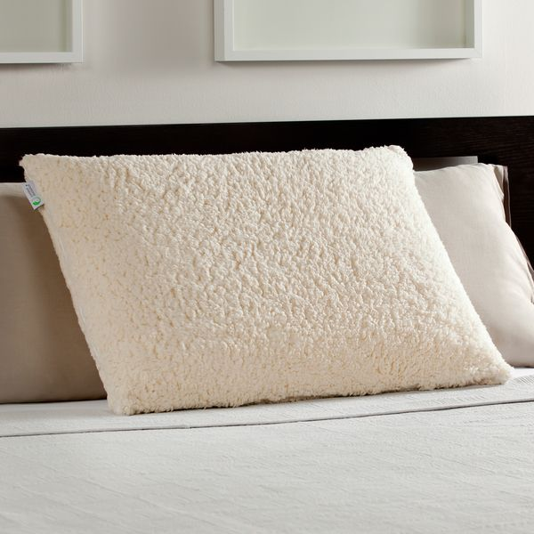 Comfort Memories Sherpa and Memory Foam Pillow  http://www.overstock.com/9658643/product.html?CID=245307