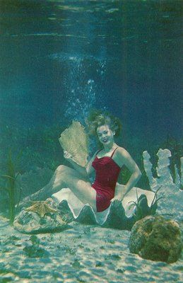 Vintage Travel Postcards: Silver Springs, Florida