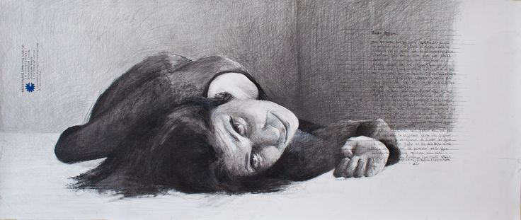 Katerina - 2010 - Pencil and charcoal on paper - 64x150cm