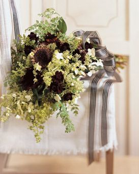 Chocolate cosmos and lace cap hydrangea and ferns