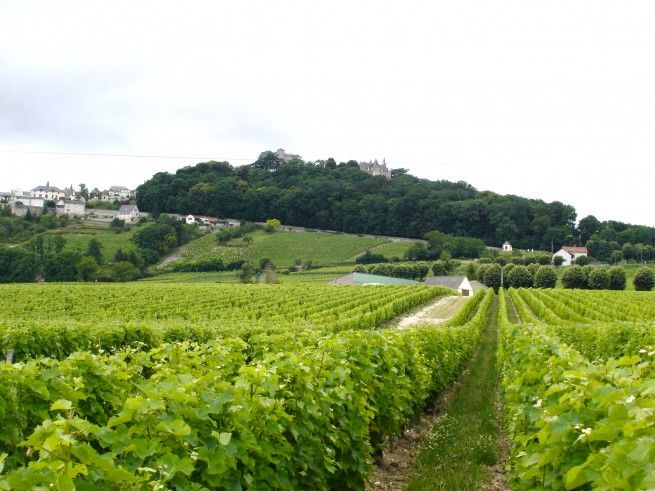 Self-Guided Wine Tour in Sancerre -- La Charite-sur-Loire, France -- Find more wine and food events on LocalWineEvents.com