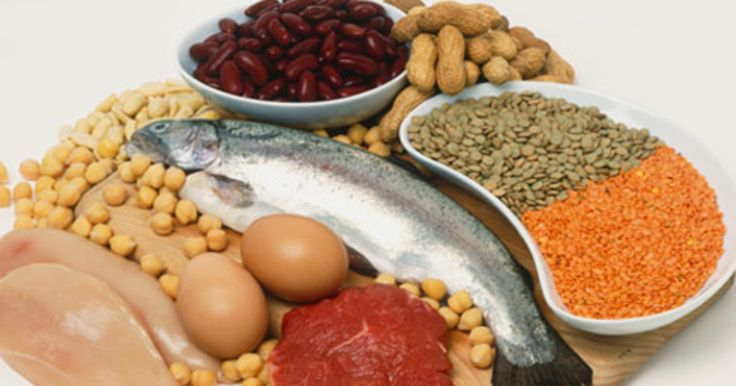 This article is all about the major nutrient; protein. The article helps to answer why we need to consume protein, lists the best sources, points to food sources other than meat or animal products, and reports how much is really needed.