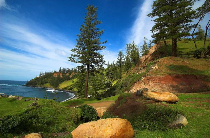 "Norfolk Island — the ""Hell in Paradise"" of an 18th-century penal colony . Norfolk Island pines. Image credit thinboyfatter"