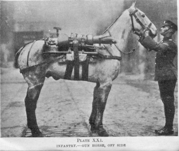 Vickers gun horse transport - 1918 - pin by Paolo Marzioli