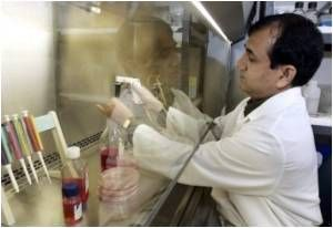 Gene Therapy Improves Limb Function Following Spinal Cord Injury: Study