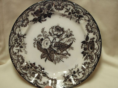 Antique-E-Challinor-Tunstall-Ironstone-Black-Transferware ...
