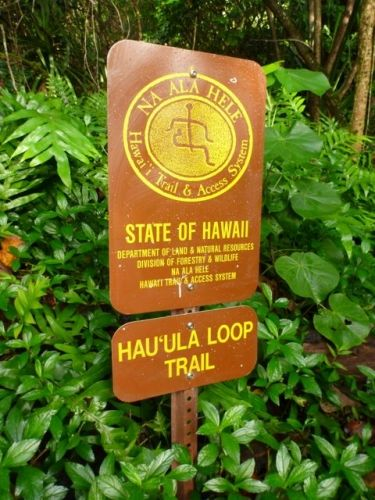 Hiking on Oahu.. for other trails: http://www.trails.com/toptrails.aspx?area=10015