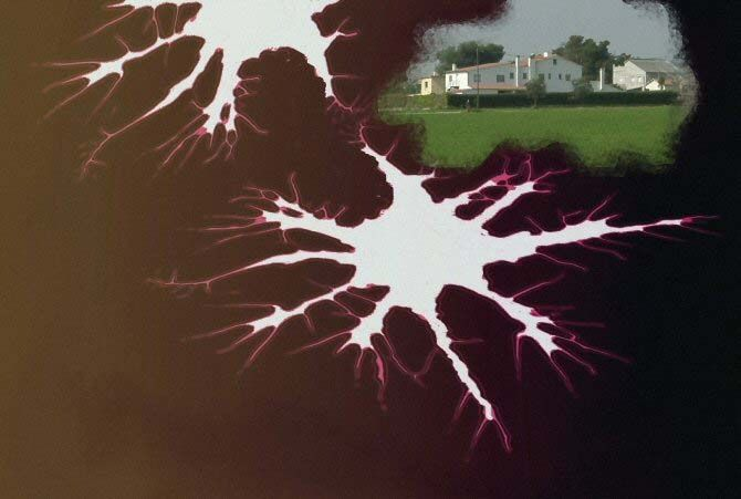 Localizan el lugar exacto del cerebro donde se forjan los recuerdos — Noticias de la Ciencia y la Tecnología (Amazings®  / NCYT®)