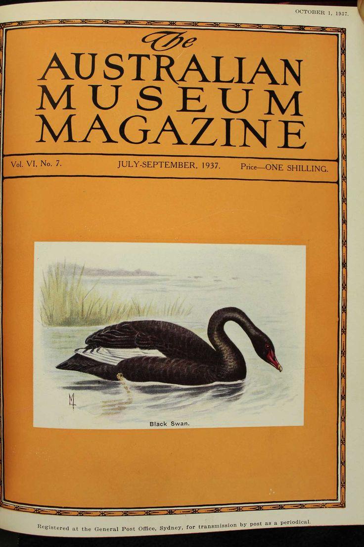 Australian-Museum-Magazine. The Black Swan. Illustrator: Lilian Medland. http://australianmuseum.net.au/Australian-Museum-Magazine-1921-1942/