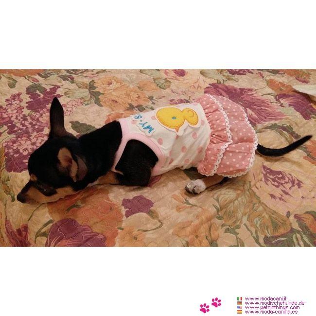 Rosa Kleid für Hund My Baby mit Pois #Hunde #Chihuahua - Kleid für für kleinen Hund (Chihuahua, Malteser, Yorkshire, Pudel), mit Tupfen-Stoff; auf der Rückseite ist mit gelben Küken bestickte dekoriert