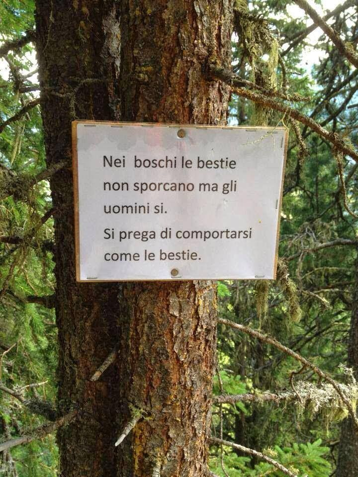 rispetto la natura- mcd