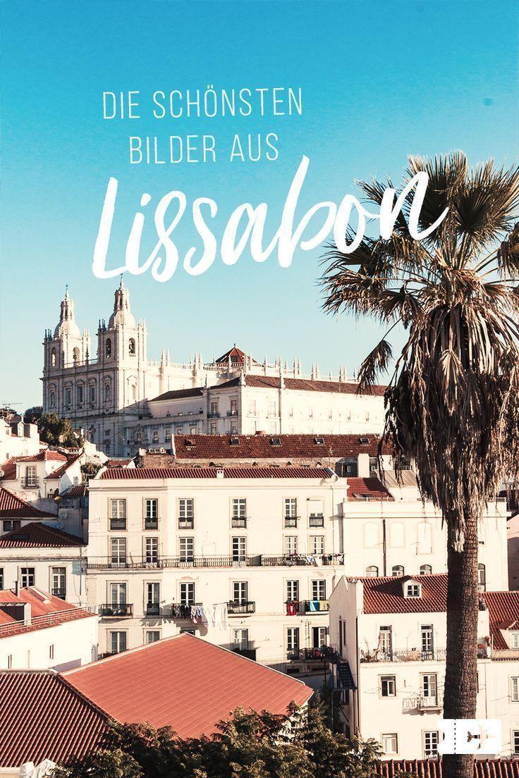 12 Bilder Bei Denen Du Sofort Nach Lissabon Mochtest Lissabon Lissabon Reise Portugal Reisen