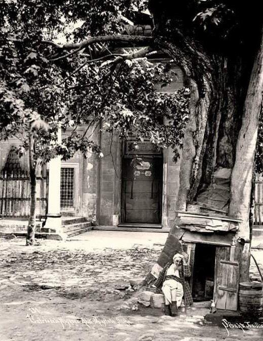 Ayvansaray Atik Mustafa Paşa Camii önünde agaç kovuguna yapılmış evinde yaşayan amca.