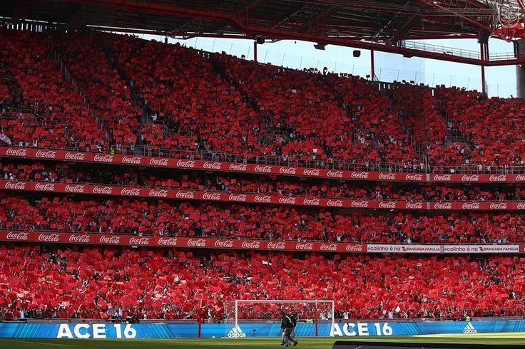 Novo site do Sport Lisboa e Benfica. Todas as novidades, destaques e informação exclusiva do Glorioso