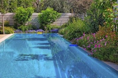 If you have a pool,  you may wonder if there are plants you can use near it that don't create a lot of mess.  This article is exactly what you're looking for.