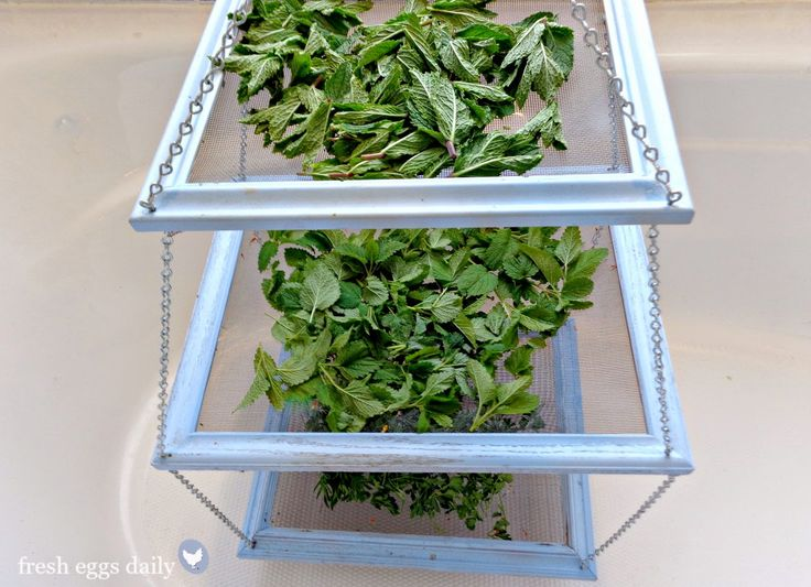 Drying Racks For Cabinet Frames ~ Ideas about herb drying racks on pinterest straw