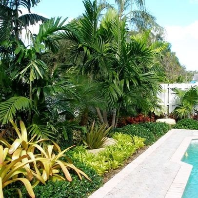 Tropical landscape design pictures remodel decor and for Tropical landscaping ideas