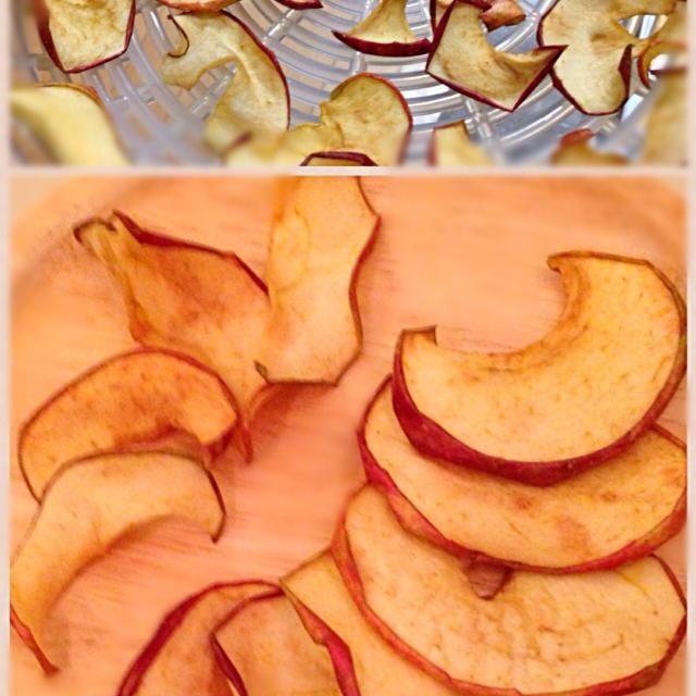 Mikiさんの所で見かけて、作りました  リンゴの味が濃くなって美味しい(*^^*)  Mikiさん、りんご以外にもいろいろチャレンジしてました〜、美味しそう(*^^*)  干し芋とか、作ってみたいなぁ。 - 91件のもぐもぐ - ドライアップル by ゆぅみん