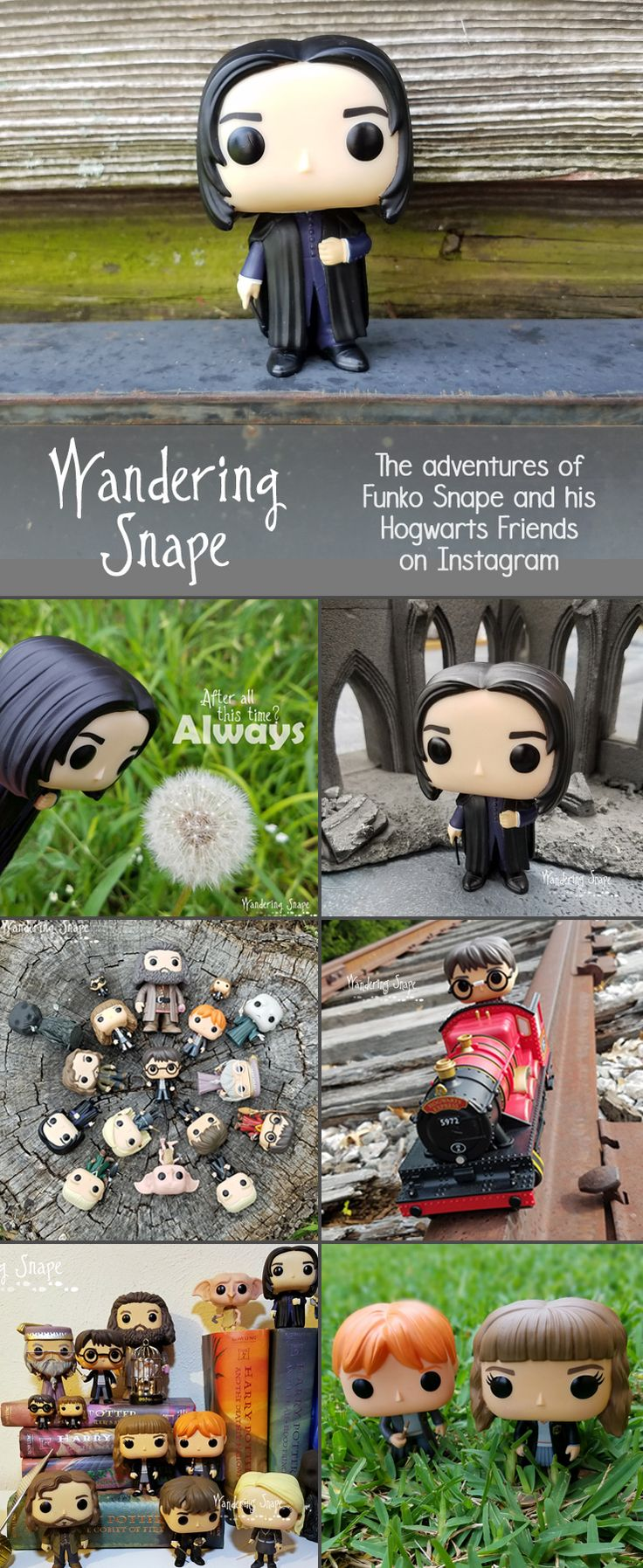 How cute are these?!?!?! Wandering Snape on Instagram
