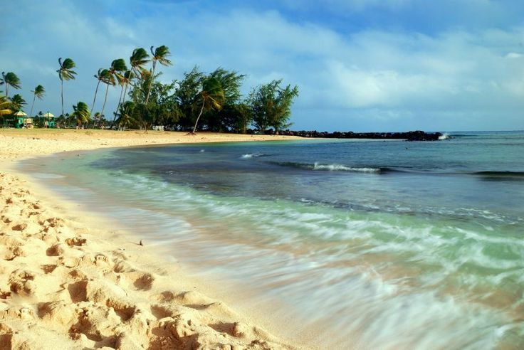 Some of the best beaches to snorkel in Kauai include Tunnels Beach, Kee Beach and Poipu Beach.