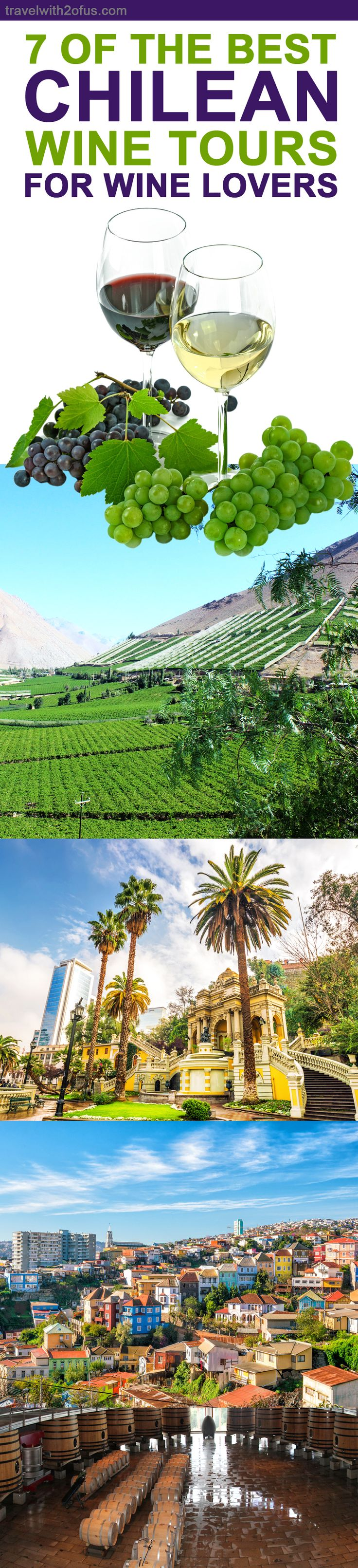 Check out seven of the best Chilean wine tours for lovers of wine and those who are just curious about how wine is made. They are also great for those who just want to spend the day outside and enjoy the fresh air and scenery of the breathtaking vineyards of Chile.