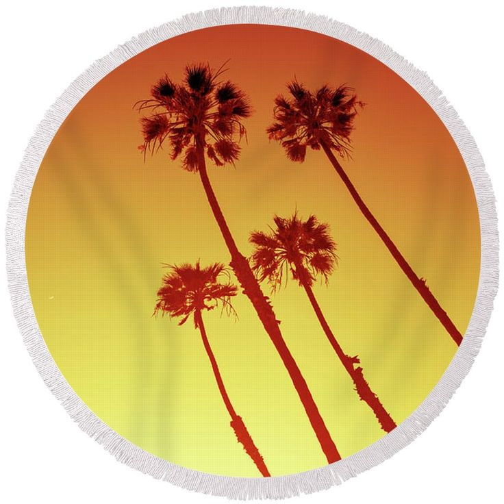 "Round Beach Towel featuring the photograph California Palm Trees In Orange by Evgeniya Lystsova. California Palm Trees view in Sunset Cliffs, San Diego, USA. The Towel that's taking the internet by storm! Our round beach towels are 60"" in diameter and made from ultra-soft plush microfiber with a 100% cotton back. Perfect for a day at the beach, a picnic, an outdoor music festival, or just general home decor."