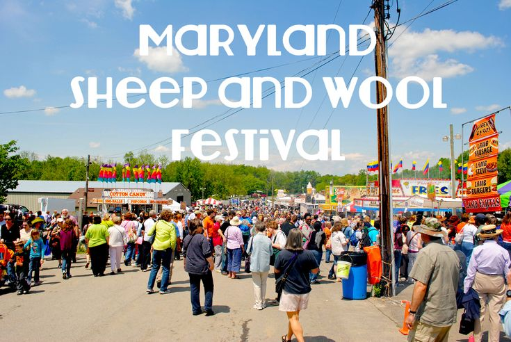 Maryland Sheep and Wool Festival: Every May, there is a call felt for knitters, crocheters, spinners, and wool aficionados everywhere to visit Maryland. Like a beacon, they come from near and far to Maryland Sheep and Wool Festival.
