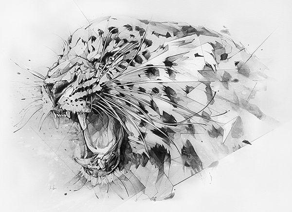 drawings-