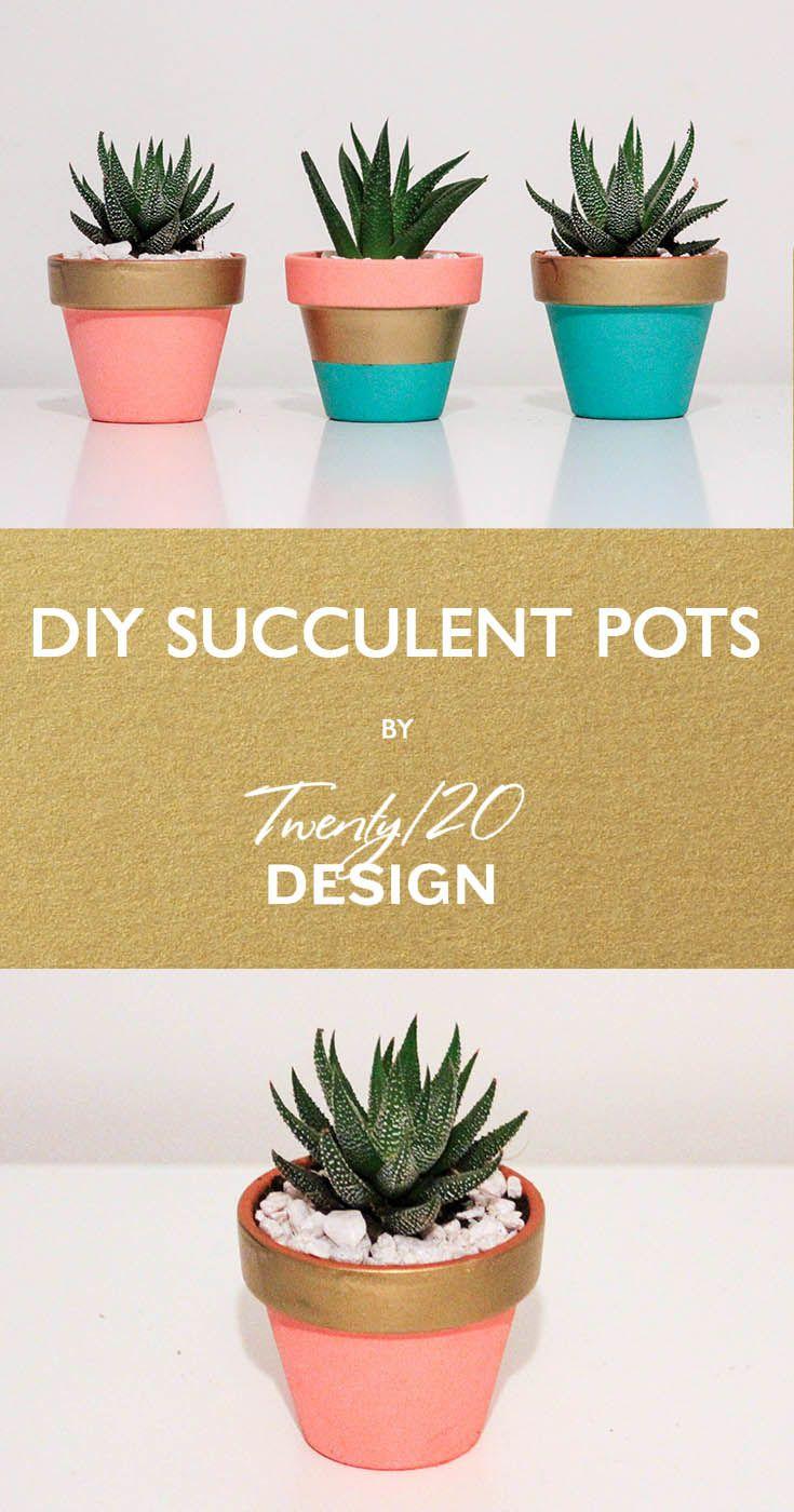Succulent Plant Pots Cheap