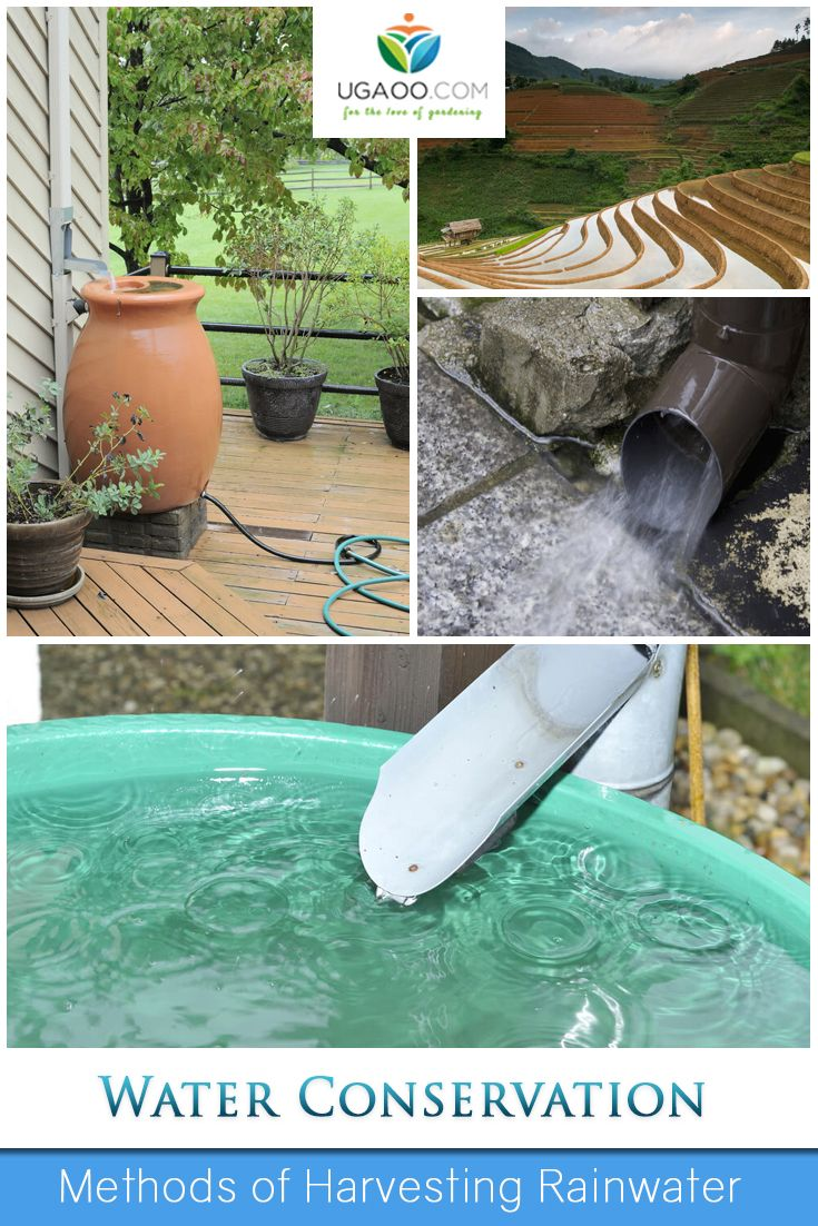 rainwater harvessting Rainwater harvesting systems (rhs) – as you might expect from the name - harvest the rainwater that has fallen freely from the sky, typically onto the roof of your home.