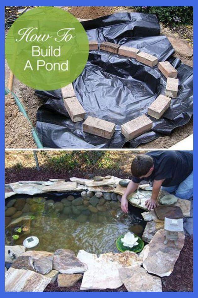 Do It Yourself Backyard Water Garden Ideas Building A Backyard