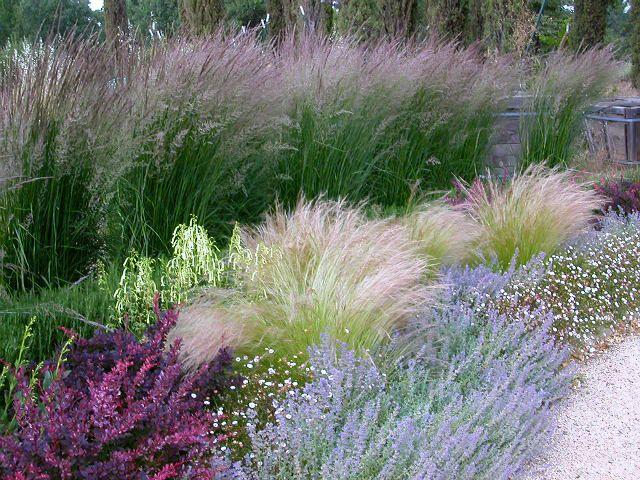 Napa Valley Landscape Design, Landscaping   St. Helena, Napa County, Calistoga   Autumn Skies Landscapes
