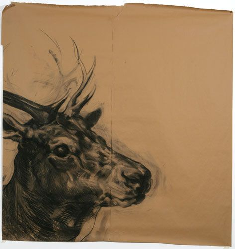 Nicola Hicks, Deer, 2006, Charcoal on paper   ...........click here to find out more     http://googydog.com