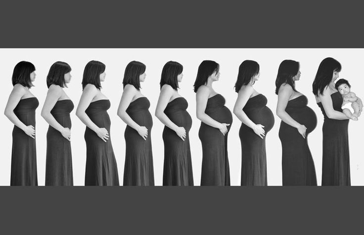 Time lapse pregnancy pictures