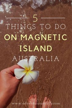 TOP 5 Things To Do | Magnetic Island QLD | Things to do | Magnetic Island Australia | Townsville | What to do on Magnetic Island | Snorkelling Great Barrier Reef | Great Barrier Reef | Scuba Diving Australia | Boating Australia | Where To Go In Australia